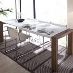 Mesa  Salón, con 2  extraíbles